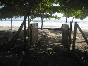 Santa Teresa, Costa Rica - beachfront house for rent